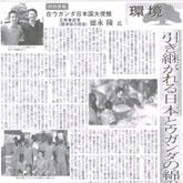 majimen_news1icon
