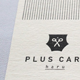 PLUS CARE_icatch
